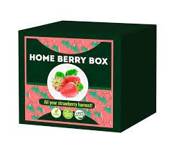 Home Berry Box– Funkció – Vélemények 2020